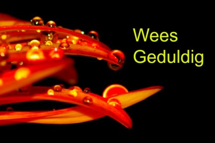 Geduld-is-de-Sleutel-tot-Succes-Easy-Branches