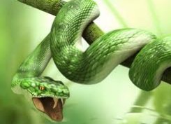 Satan die via de slang de mens in de verleiding bracht om te zondigen