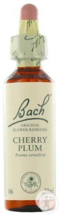 bach-flower-remedie-06-cherry-plum-kerspruim-20ml