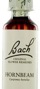 bach-flower-remedie-17-hornbeam-haagbeuk-20ml-135x300