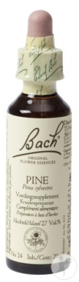 bach-flower-remedie-24-pine-grove-den-20ml-1