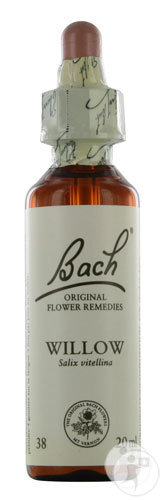 bach-flower-remedie-38-willow-wilg-20ml