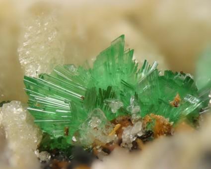 Annabergit; Bildbreite: 3,5 mm; Fundort: Km 3, Lavrion, Attika, Griechenland; https://www.mineralienatlas.de/lexikon/index.php/Bildanzeige?pict=1237492905