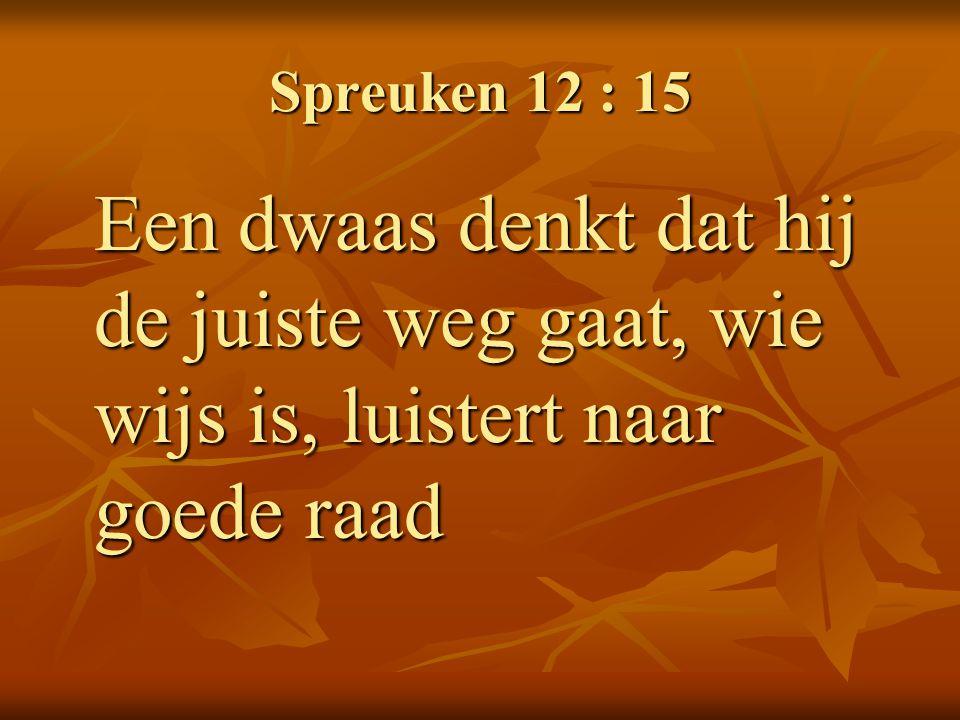 spreuken 12 Spreuken+12+ +15+Een+dwaas+denkt+dat+hij+de+juiste+weg+gaat,+wie+  spreuken 12